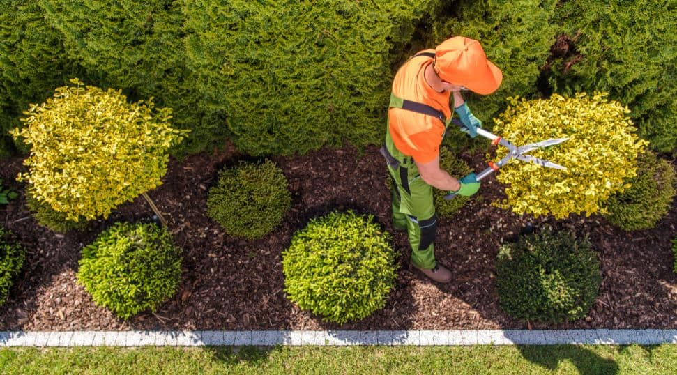 How Commercial Landscaping Benefits Your Business